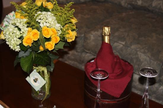 The Copperfield Inn Resort: The gorgeous flowers