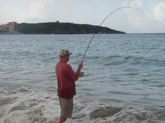 Nice fish picture of tyt lynz guide services st for St maarten fishing