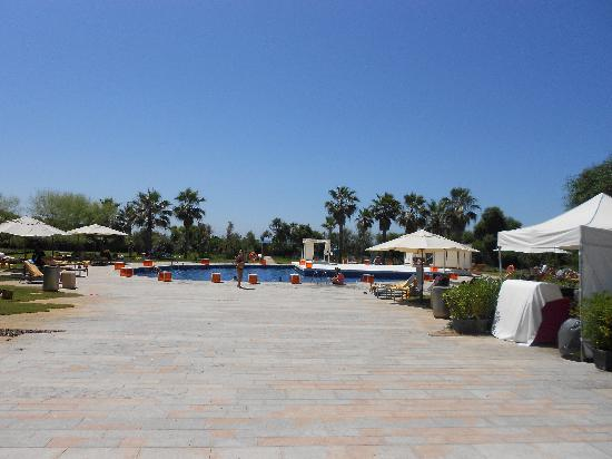 AC Hotel Gava Mar by Marriott: AC Gava Pool