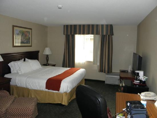 Holiday Inn Express Rochester: Room