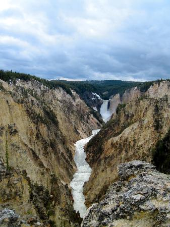 Canyon Village Campground: Grand Canyon of Yellowstone