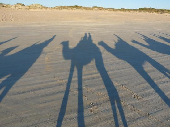 Barefoot Bungalows: shadows on the beach