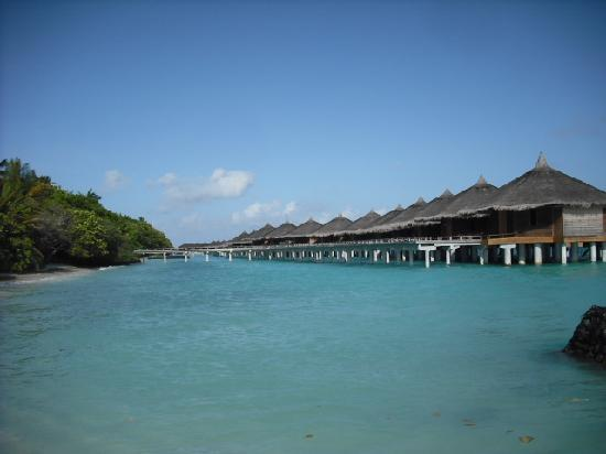 Download this Rasdhoo And Kuramathi Picture Island Resort picture
