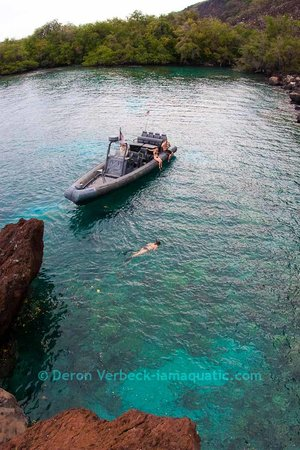 wild hawaii ocean adventures whoa kailua kona reviews of one whoa 300x450