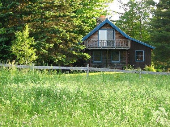 Eden Mountain Lodge: A cozy cottage in the woods -- with all the modern amenities