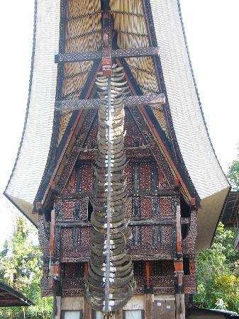 Rantepao, Indonesia: House with buffalo horns
