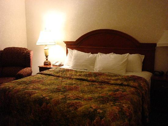 Drury Inn & Suites Creve Coeur: King size room