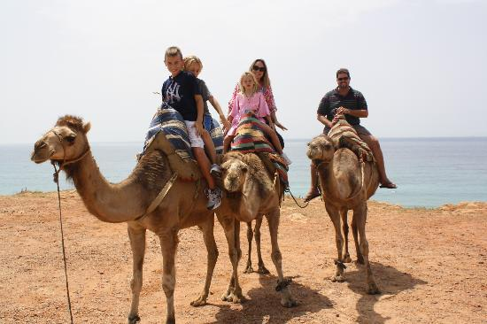 Tangier, Maroko: Camel ride
