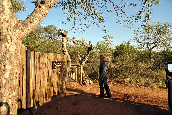 Singwe River Lodge: bush lodge for coffee break!