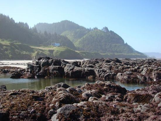 Ocean Haven seen from the tide pools.