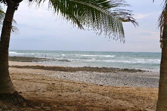 view from my chair Costa Rica Playa Avellana