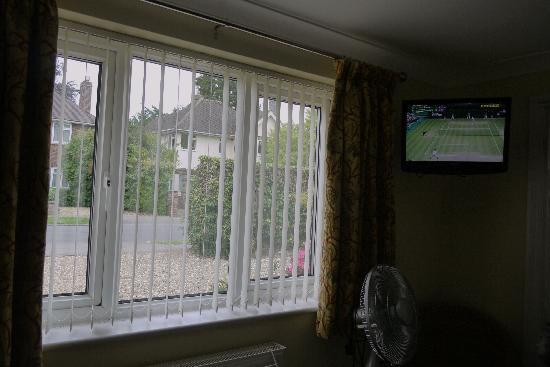 Finches Bed and Breakfast: 10) Front garden view and television at Finches B&amp;B 03.07.11 1602