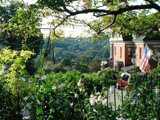 Abbey's High Street Bed and Breakfast: one view from the garden
