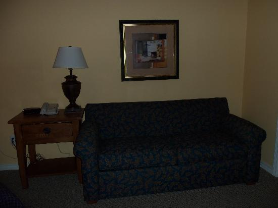 Falls Village Resort: Couch bed in Studio apartment