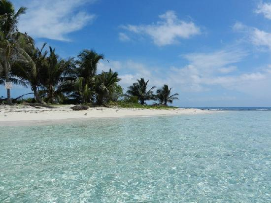 Green Parrot Beach Houses: Silk Caye
