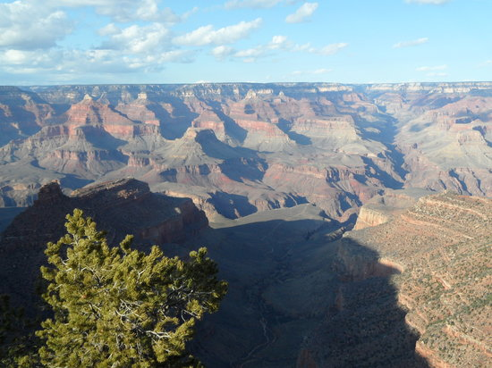 Grand Canyon National Park, AZ: Spring is arriving
