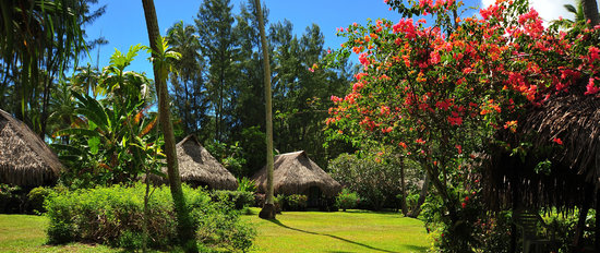 Photo of Hotel Hibiscus Haapiti