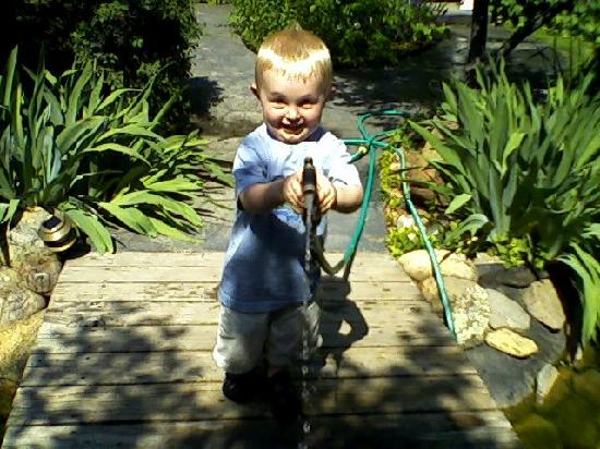 Kolt playing with the hose near the pond: From Review: We've stayed here ...