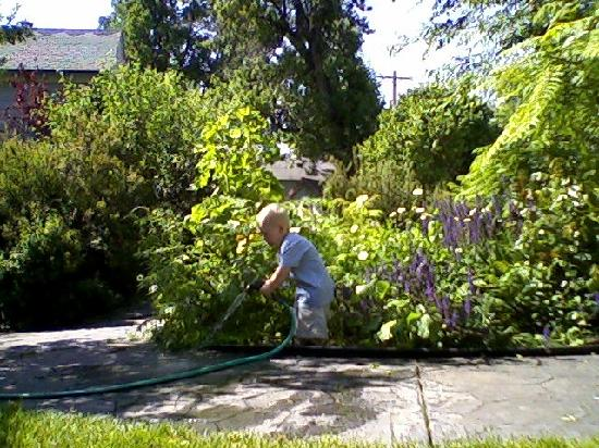 Yesterday's Inn: Kolt watering the flowers