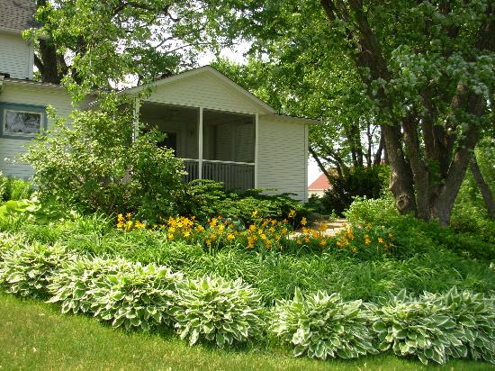 Whispering Winds Retreat Haven: Hosta and Daylily bed outside screen porch