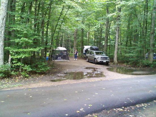 Nick's Lake Campground: One of our sites
