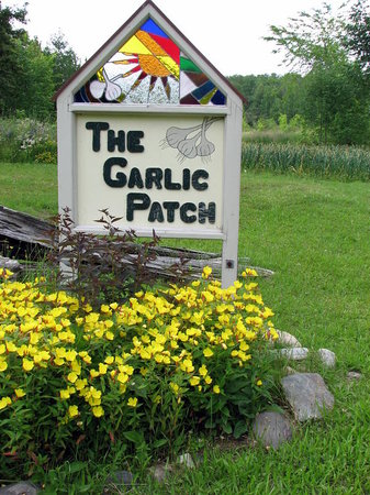 The Garlic Patch Bed &amp; Breakfast: Welcome to the Garlic Patch!