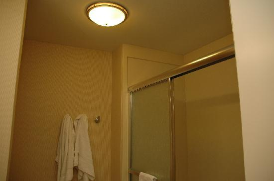 Hampton Inn Hillsboro: Shower