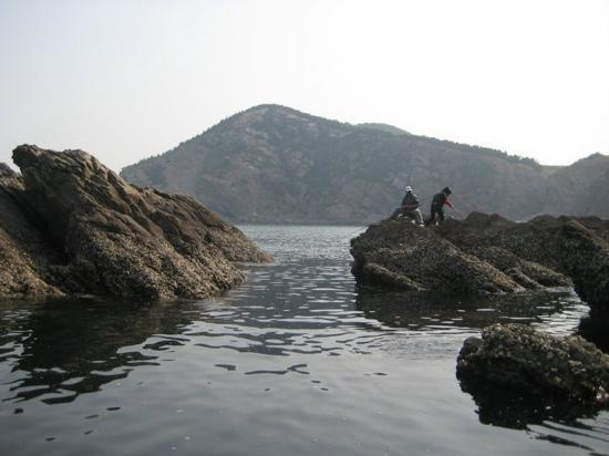 Pictures of Zhifu Island, Yantai - Traveler Photos - TripAdvisor