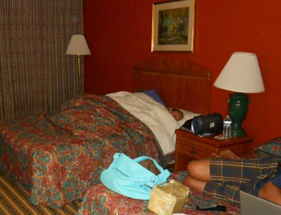 Econo Lodge Inn & Suites: I disinfected the bed before putting the kids to sleep