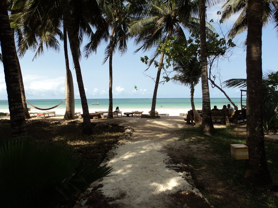 Diani Beach, Kenya: lunch with a view