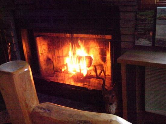 Asheville Cabin Rentals: Mmmm! Warm fireplace!