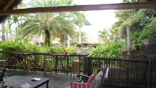 Homestead, FL: The winery