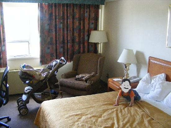 Quality Hotel and Conference Centre Brockville: Bed , chair and window