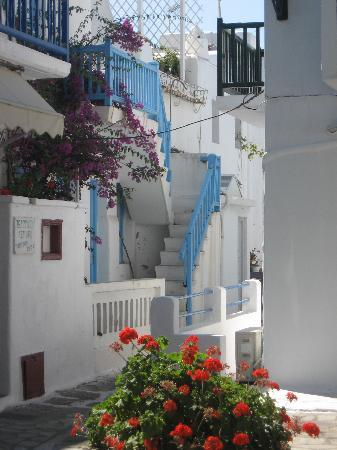 Mykonos Town, Greece: fiori a Mikonos