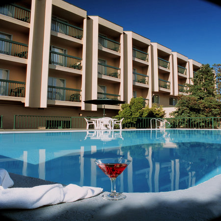 Ramada Victoria Hotel: Our beautiful heated pool and bbq area!