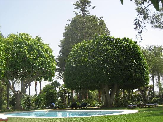 Hotel Los Monteros: Garden and pool area