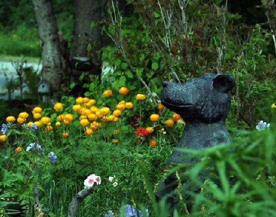 Walkabout Town B&B: Front Gardens and our bear