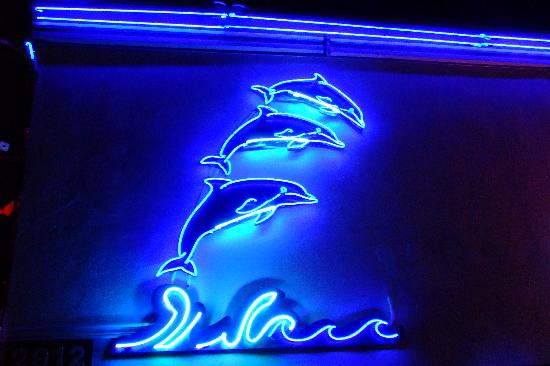 Dolphin Motel: Loved the Neon at night