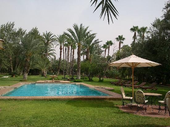 Dar Ayniwen Villa Hotel: Piscine trs agrable