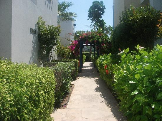 Eleni Holiday Village: Lush pathways