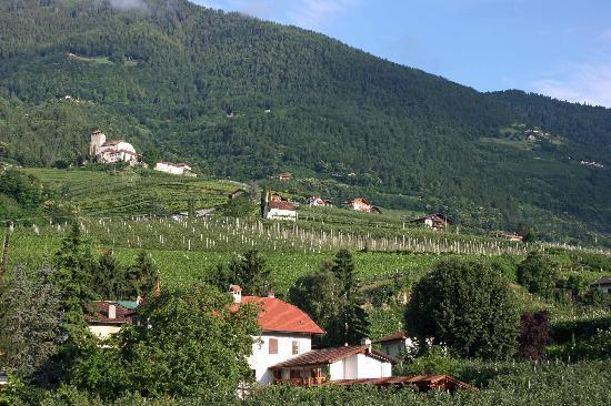 Ferienclub Breitenbergerhof: View from room of mountains, orchards, Lebenberg Castle.