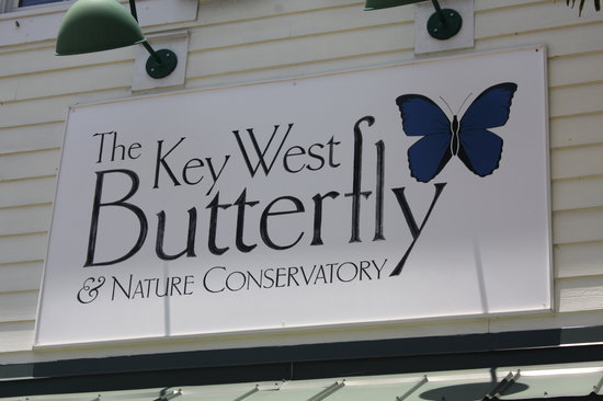 Key West Butterfly and Nature Conservatory