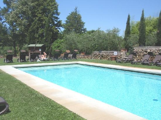Albergo Villa Marta: the pool