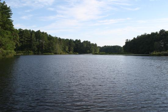 Pinewood Lodge Campground: Lake Pinewood
