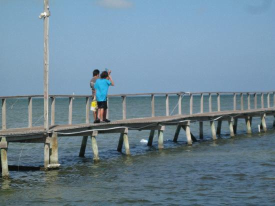 Fishing on the pier is always a blast picture of for Rockport texas fishing report