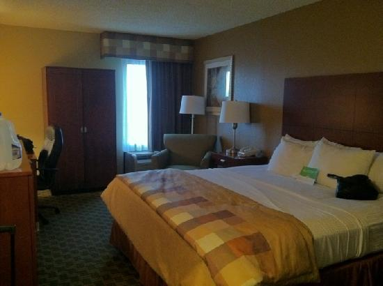 La Quinta Inn & Suites Rochester South: King Bed Room