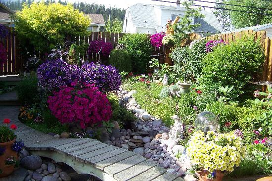 Austrian Haven Bed and Breakfast: backyard garden