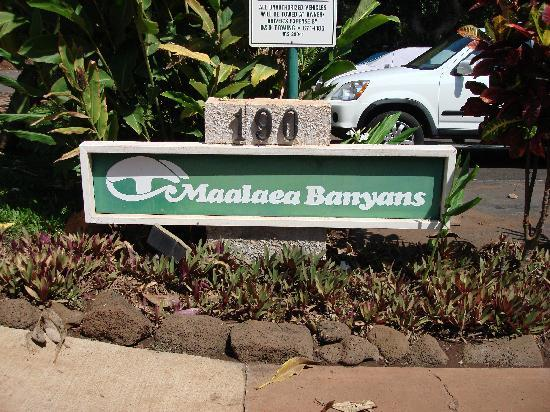 Maalaea Banyans