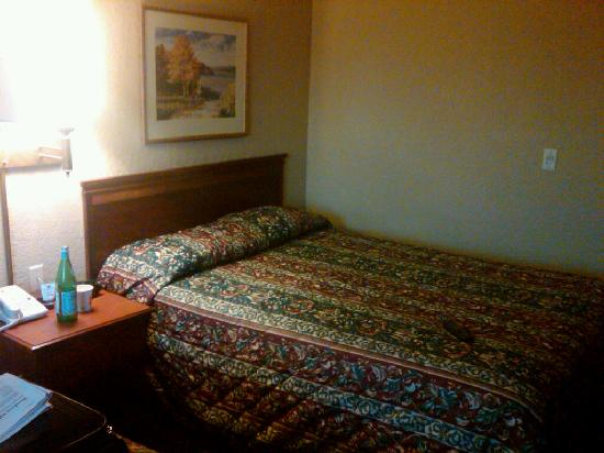 Super 8 Motel Grimsby: Room / Bed