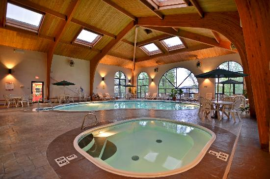 Beautiful flowers and butterflies picture of comfort for Branson mo cabins with indoor pool
